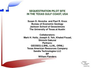 SEQUESTRATION PILOT SITE  IN THE TEXAS GULF COAST, USA