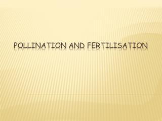 Pollination and Fertilisation