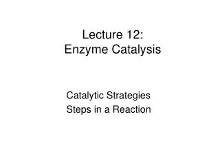 Lecture 12: Enzyme Catalysis