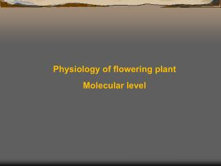 Physiology of flowering plant Molecular level