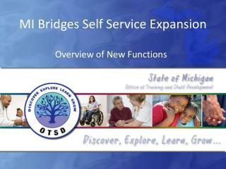 MI Bridges Self Service Expansion