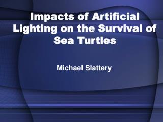 Impacts of Artificial Lighting on the Survival of Sea Turtles