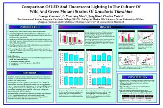 Comparison Of LED And Fluorescent Lighting In The Culture Of