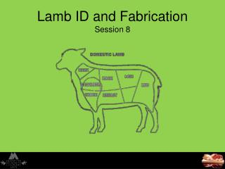 Lamb ID and Fabrication Session 8