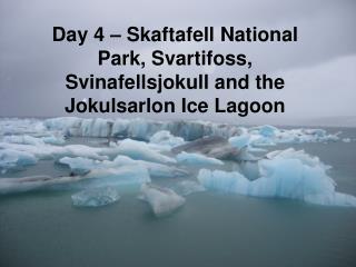 Day 4 – Skaftafell National Park, Svartifoss, Svinafellsjokull and the  Jokulsarlon Ice Lagoon