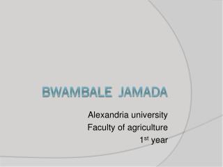 Bwambale Jamada