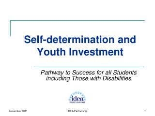 Self-determination and Youth Investment