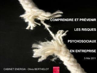 COMPRENDRE ET PRÉVENIR  LES RISQUES PSYCHOSOCIAUX   EN ENTREPRISE 5 Mai 2011