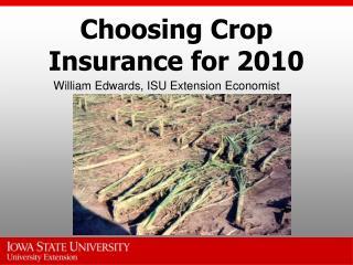 Choosing Crop Insurance for 2010