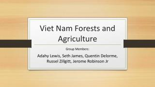 Viet Nam Forests and Agriculture