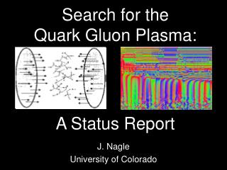 Search for the  Quark Gluon Plasma: A Status Report