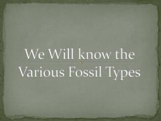 We Will know the  Various  Fossil Types