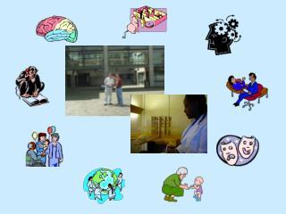 Spatial Memory  & Navigation