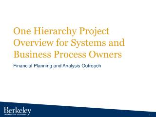One Hierarchy Project Overview for Systems and Business Process Owners