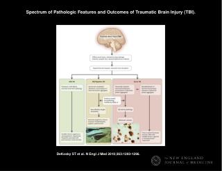 Spectrum of Pathologic Features and Outcomes of Traumatic Brain Injury (TBI).