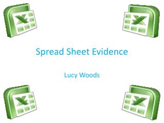 Spread Sheet Evidence