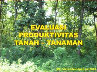 EVALUASI PRODUKTIVITAS  TANAH  � TANAMAN Mk. Stela-smno.fpub.jun2013