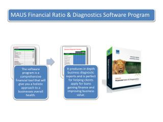 MAUS Financial Ratio  & Diagnostics