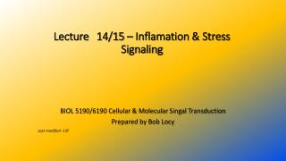 Lecture  14/15  –  Inflamation  & Stress Signaling