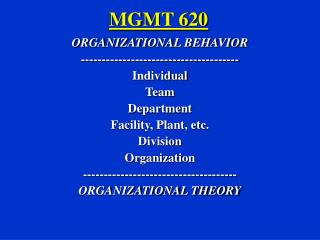 MGMT 620