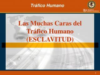 Las Muchas Caras del Tráfico Humano (ESCLAVITUD)