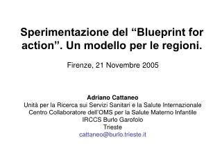 """Sperimentazione del """"Blueprint for action"""". Un modello per le regioni. Firenze, 21 Novembre  2005"""