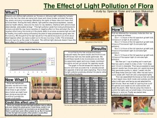 The Effect of Light Pollution of Flora