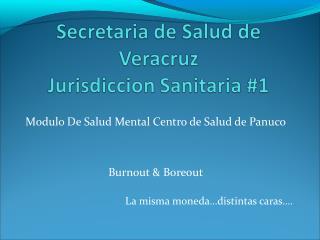 Modulo De Salud Mental Centro de Salud de Panuco Burnout & Boreout