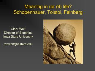 Meaning in (or of) life?  Schopenhauer, Tolstoi, Feinberg