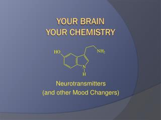 Your Brain Your Chemistry