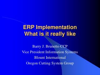 ERP Implementation What is it really like
