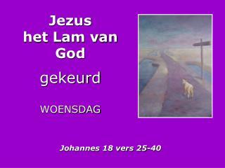 Jezus het Lam van God