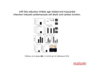RA Boon  et al.  Nature 000 ,  1-4  (2013) doi:10.1038/nature11919