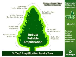 GoTaq® Amplification Family Tree