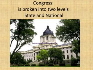 Congress: is broken into two levels  State and National