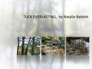 TUCK EVERLASTING,  by Natalie Babbitt