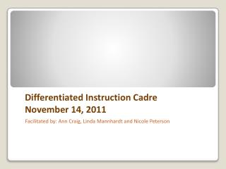 Differentiated Instruction Cadre November 14, 2011