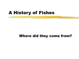 A History of Fishes