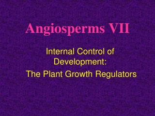 Angiosperms VII