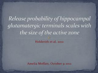 Release probability of hippocampal glutamatergic terminals scales with the size of the active zone