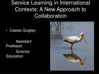Service Learning in International Contexts: A New Approach to Collaboration