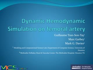 Dynamic Hemodynamic Simulation on femoral artery