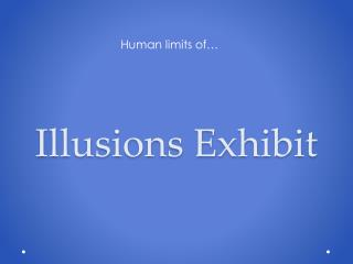 Illusions Exhibit