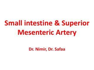 Small  intestine & Superior Mesenteric Artery Dr.  Nimir , Dr.  Safaa