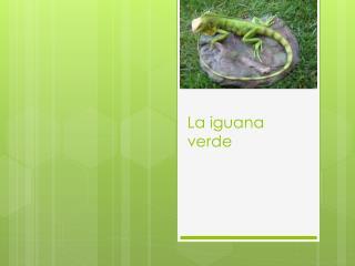 La iguana verde