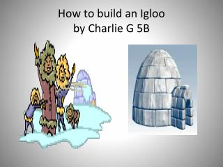 How to build an Igloo by Charlie G 5B