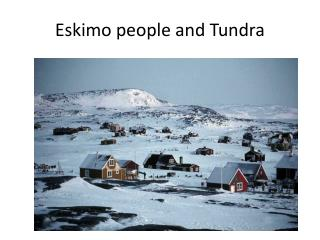 Eskimo people and Tundra