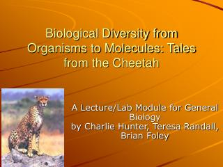 Biological Diversity from Organisms to Molecules: Tales from the Cheetah