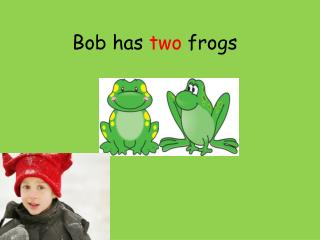 Bob has  two  frogs