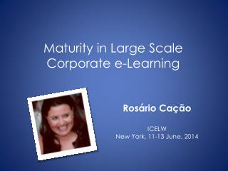 Maturity in Large Scale  Corporate e-Learning